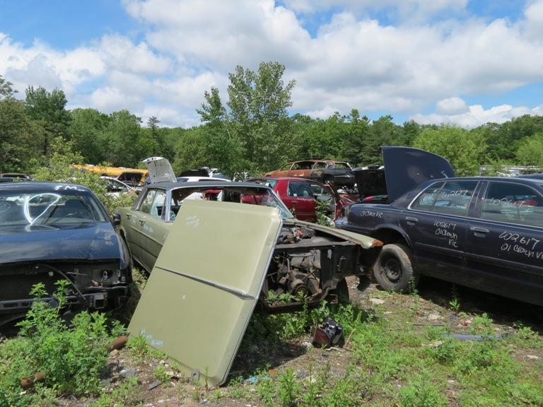 Hood hinge area rust issues 66gal