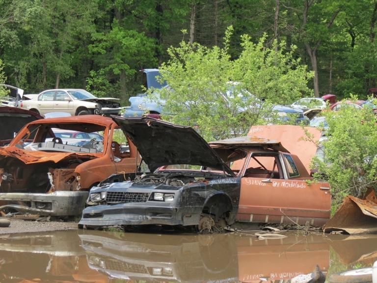 Hood hinge area rust issues 84monte